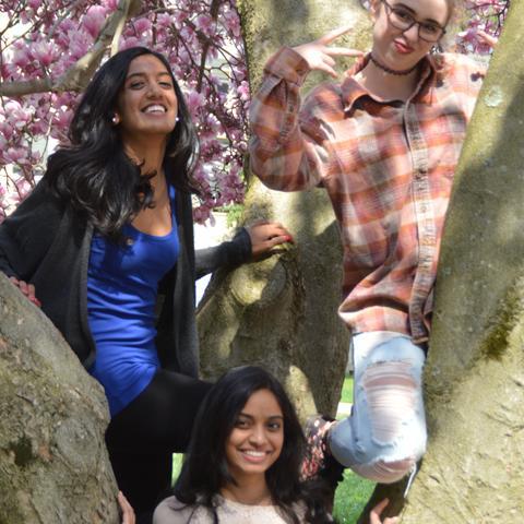 Spring at Rosemont