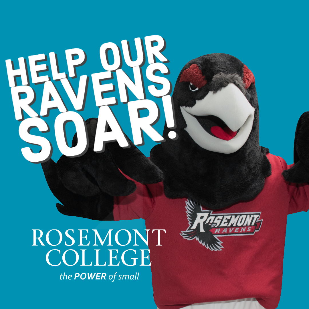 Rnnie the Raven: help our ravens soar